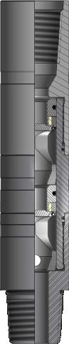 Dual Flapper Check Valve